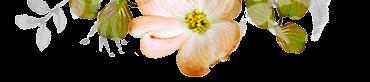 Floral design element for motel