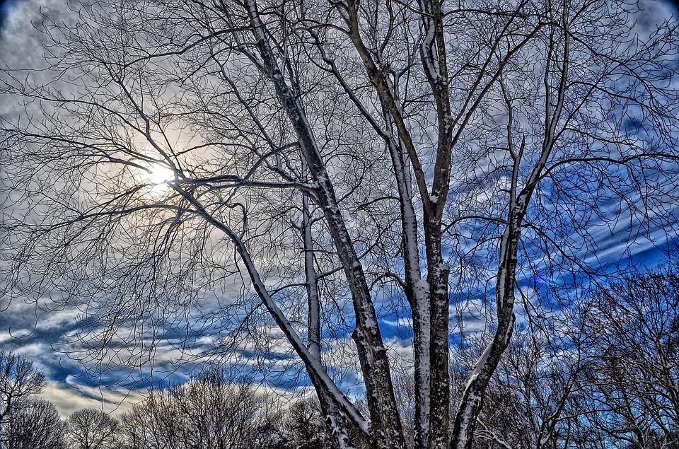 North Carolina Winter Activities