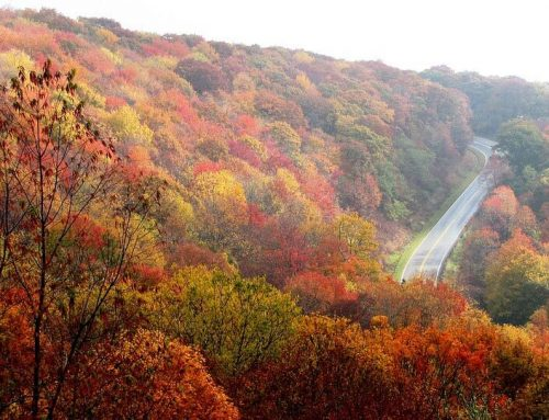 Escape to North Carolina Mountain Resorts This Fall