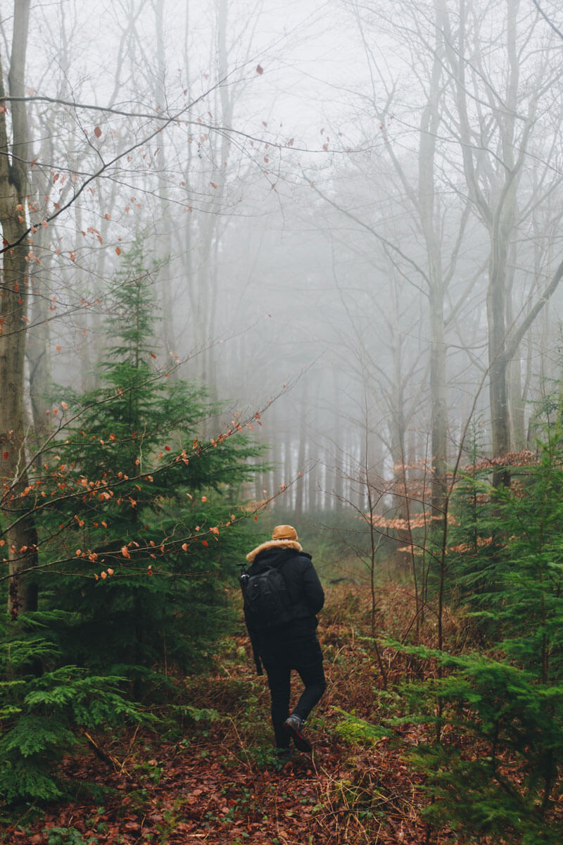 Fun Things to Do in NC Mountains: Get Back to the Land & Learn Prepper Skills