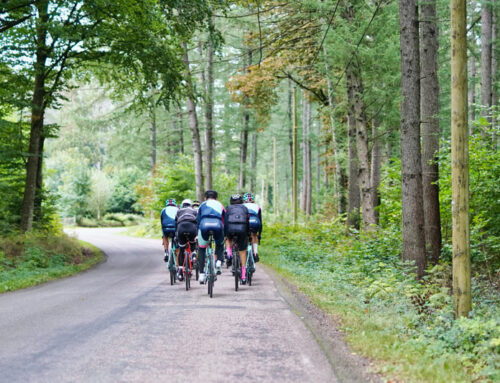 Pedal Your Heart Out on These Scenic Bike Trails Near Maggie Valley