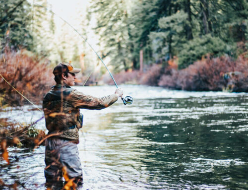 Reel in 'The Big One' at These Top Rivers for Fly Fishing in the Smoky Mountains