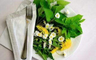 Edible plants in North Carolina