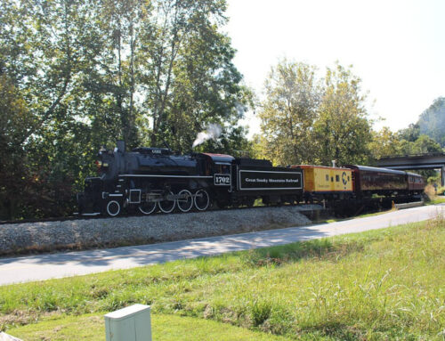 All Aboard! Are You Ready for an Unforgettable Adventure Exploring the Smokies by Train in the North Carolina Mountains?